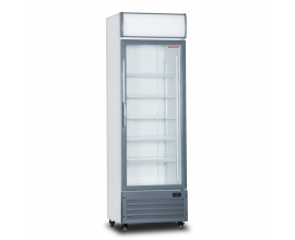 ARMARIO EXPOSITOR REFRIGERADO CON DISPLAY LUMINOSO LGS-400W
